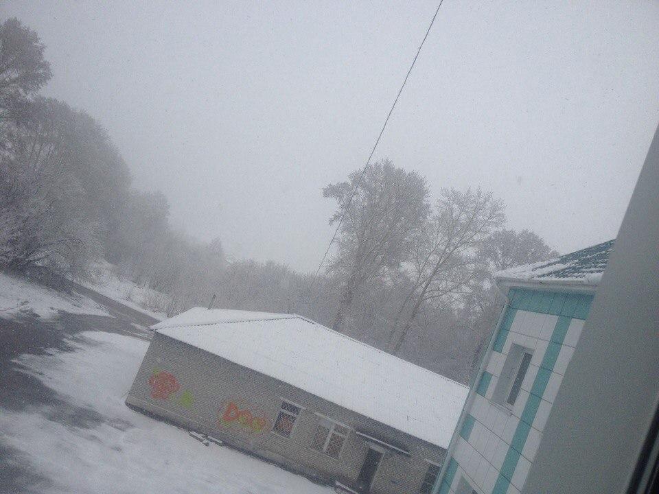 Первомай вКузбассе пройдёт под снегом— синоптики
