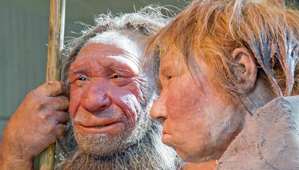 Ученые собираются вырастить мозг неандертальца