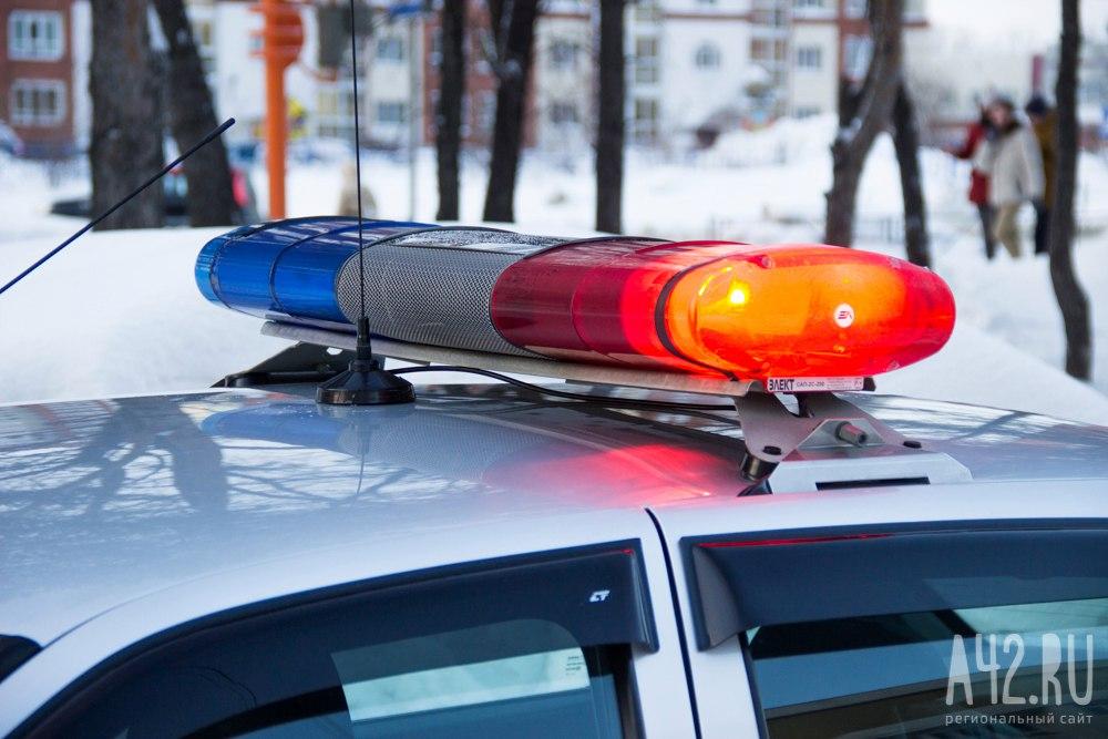 Натрассе вПрокопьевском районе шофёр Лада Granta насмерть сбил пешехода