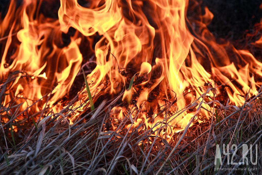 ВИталии задержаны 15 пожарных, которые сами поджигали леса ради премий