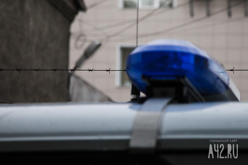 Жителя Кемерово осудили засбитую назебре девочку