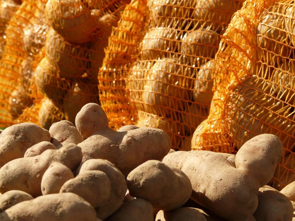 Кузбасс: фура вспыхнула наПромышленновской трассе, сгорело 500кг картофеля