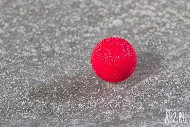 Кемеровская СДЮСШОР похоккею смячом стала лучшей в РФ