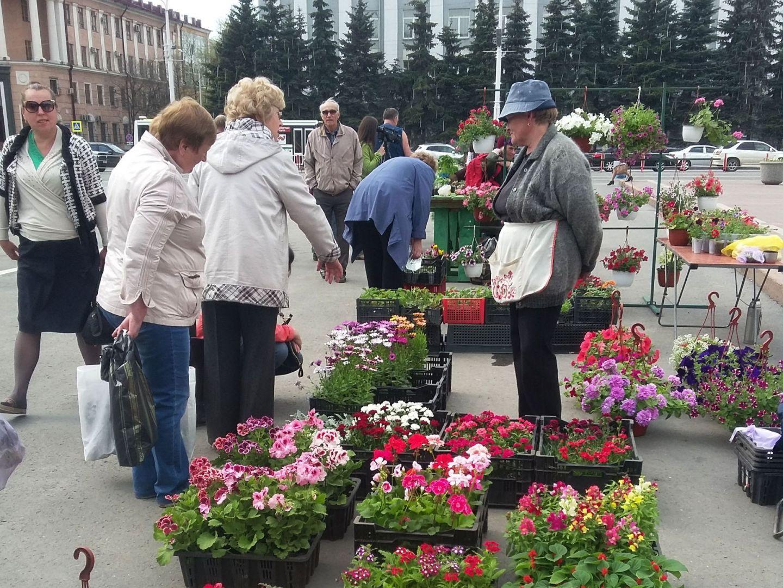 ВКемерове пройдет огромная садоводческая ярмарка