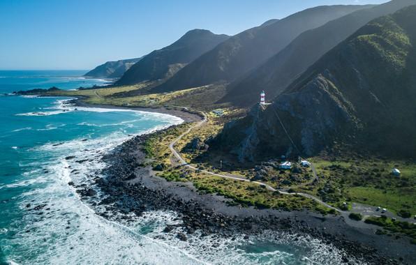 В новейшей  Зеландии уморя отыскали  огромное  пульсирующее существо