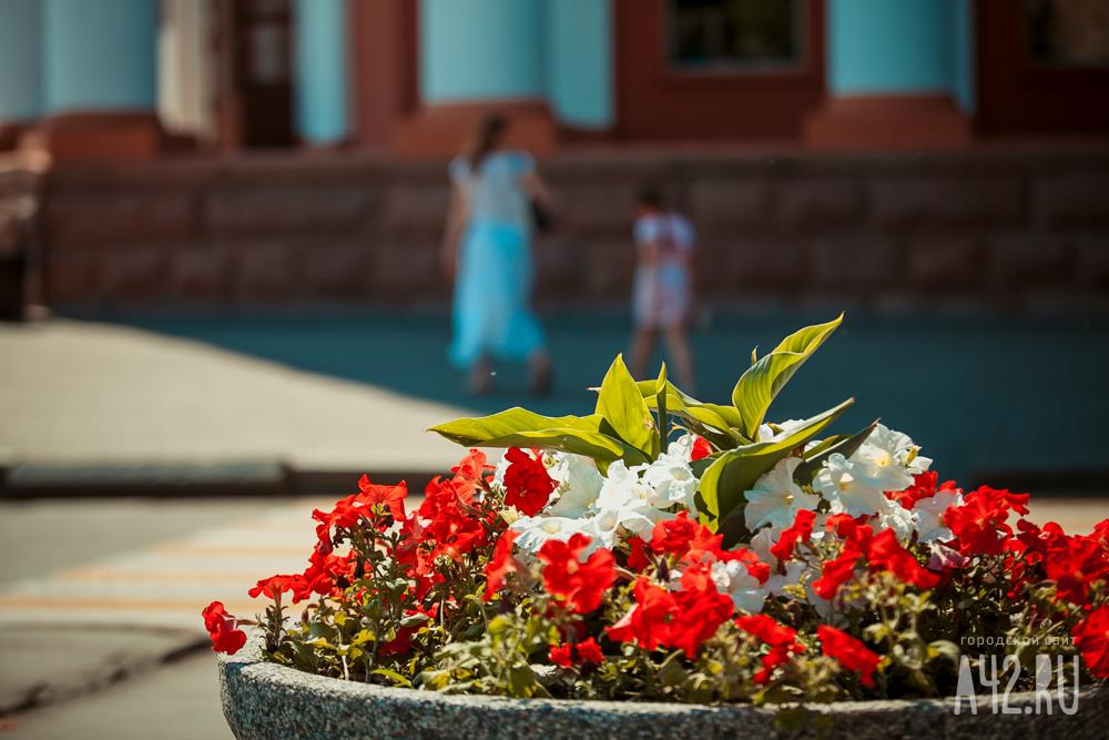 Неменее млн. цветов высадят вКемерове к100-летию города