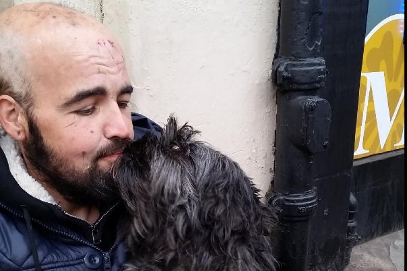 Избитому бродяге ираненому псу собрали полмиллиона руб.