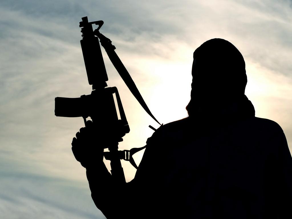 В Государственную думу внесли законодательный проект олишении гражданства осужденных затерроризм
