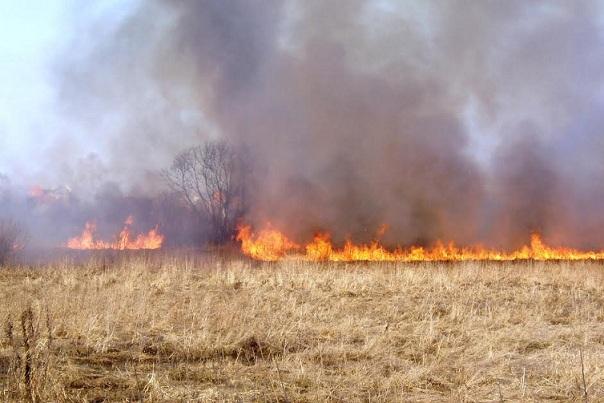 РежимЧС ввели из-за пожаров вСибири