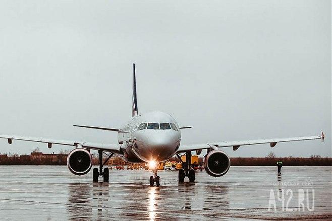Прокрустова переноска: «Аэрофлот» меняет правила транспортировки животных