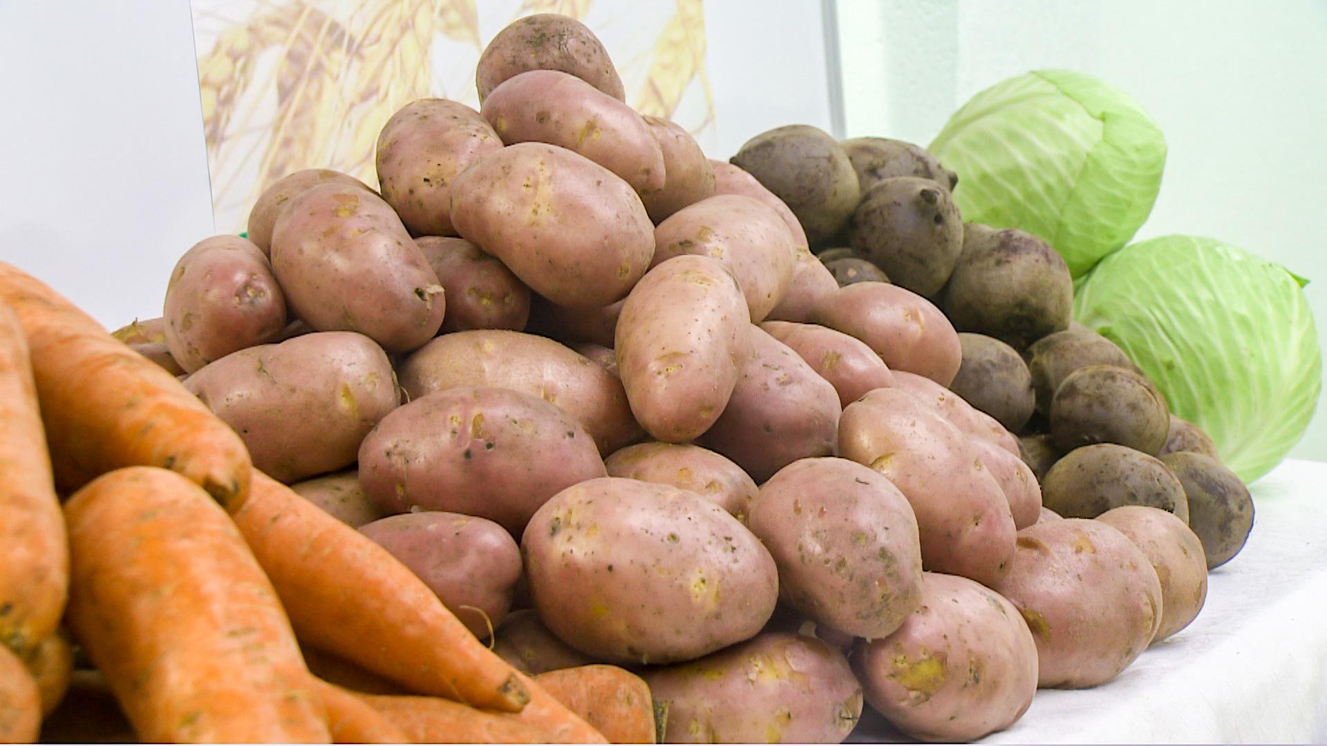 Кузбассовцы получат бесплатные овощные комплекты кзиме