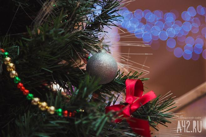 Психологи пояснили, когда лучше всего убирать новогодние елки