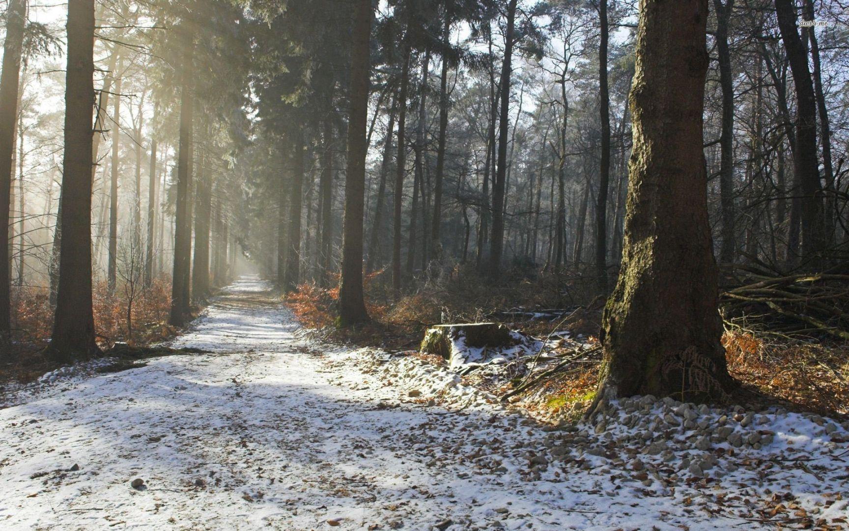 ВКузбассе приняли закон оразвитии индустриальных парков